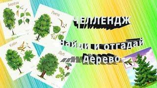 #Челлендж #найди  и отгадай дерево #познавательное видео для детей