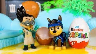 Щенячий патруль Мультик для детей Гонщик против Ромео Видео для детей про Игрушки #Мультфильмы