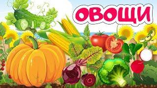 Учим овощи для детей | Карточки Домана | Развивающие мультики для детей - мультфильмы