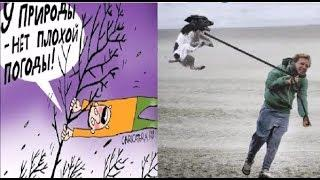 Про ветер. Ветер ветер ты могуч.  Карикатуры смешные картинки юмор приколы.