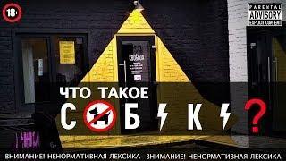 Группа САБАКА - SABAKA | бар СВОБОДА | интервью с ХОВАНСКИМ | приколы юмор и мат 18+