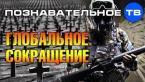 Глобальное сокращение лишних людей и лишней власти (Познавательное ТВ, Роман Василишин)