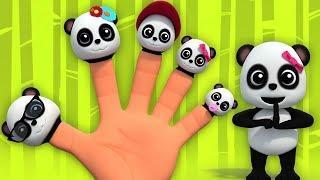 панда палец семья | маленькая панда | Panda Finger Family | русский мультфильмы для детей
