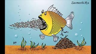 про охотников и рыбаков с юмором   часть 2 весёлые картинки и карикатуры