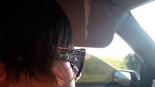 что делать если светит солнце а очки не помогают. Летний юмор - Уверен вы такого не видели))