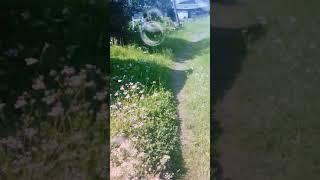 Познавательное видео для натахи