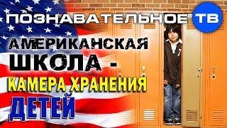 Американская школа - камера хранения детей (Познавательное ТВ, Айрат Димиев)