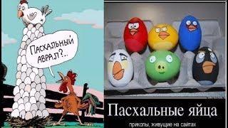 Про яйца. Про куриные яйца. Смешные картинки карикатуры юмор фото приколы.