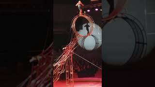 Цирк Владивосток