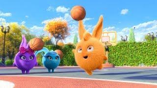 Солнечно Зайчики - Ушастая команда | Забавные мультфильмы для детей | WildBrain