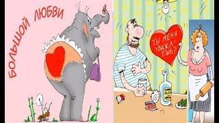 Про день Валентина и про валентинки. Карикатуры смешные картинки юмор приколы.