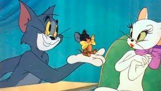 Том и Джерри Tom and Jerry Мультфильмы для детей серия #30