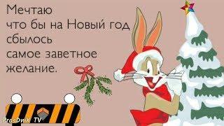 Юморнем ?! Зимний позитивчик! Юмор под новый год! Позитив для друзей!