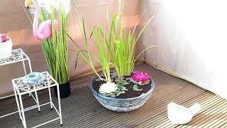 КАК СДЕЛАТЬ МИНИ ПРУД НА БАЛКОНЕ НИМФЕЯ...MINI POND ON THE BALCONY  NIMFEIA.