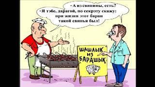 Анекдоты  Муж и жена , Гаишник и другие  Юмор приколы