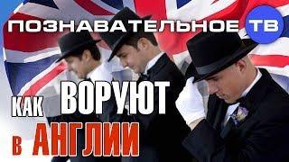 Как воруют в Англии (Познавательное ТВ, Василий Колокольцов)