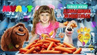 Тайная жизнь домашних животных 2016 Мультобзор от Алисы! Мультики для детей!!! Мультфильмы 2016