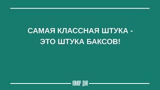Женский юмор ПРО ДЕНЬГИ | Смешные высказывания - Юмор дня