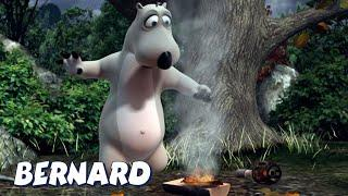 Бернард Медведь | Пожар! Пожар! И БОЛЬШЕ | Мультфильмы для детей | WildBrain