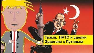 Трамп, НАТО и сделки Эрдогана с Путиным. Zapolskiy мультфильмы