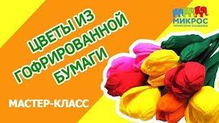 Цветы из гофрированной бумаги: как сделать своими руками? Мастер-класс по изготовлению от Микрос