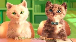 Развивающие мультики про животных – Маленький котенок в школе Мультфильмы для детей Все серии подряд