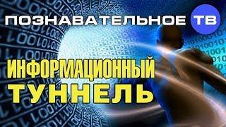 Глобальный информационный туннель для человечества (Познавательное ТВ, Михаил Величко)