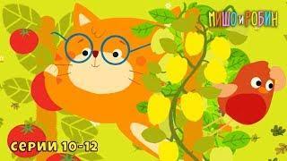Мишо и Робин - Новые серии 10-12. Развивающие мультфильмы для детей.