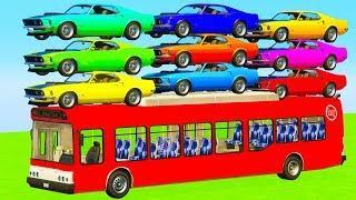 Мультики про машинки Цветные Спортивные Машинки и Красный Автобус Мультфильмы для детей