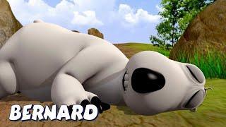 Бернард Медведь | Спи на полу И БОЛЬШЕ | Мультфильмы для детей | WildBrain