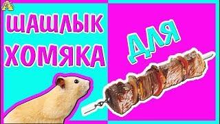 ХОМО - ШАШЛЫК для ХОМЯКА / как сделать magic ШАШЛЫК для питомца / Лето, хомки, жара / Алиса Изи pets