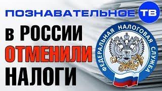 Почему в России отменили все налоги? (Познавательное ТВ, Артём Войтенков)