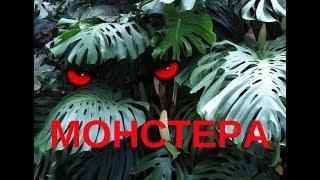 КАК СДЕЛАТЬ НЕОБЫЧНОЕ БЛЮДО- МОНСТЕРА .Резьба болгаркой.