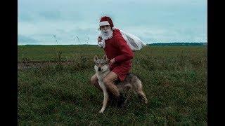 Южный Дед Мороз (Santa Claus), новогодний юмор