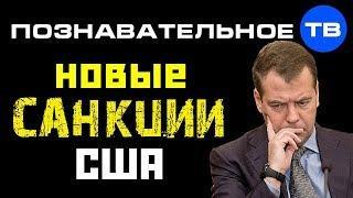 Почему Америка вводит новые санкции против России? (Познавательное ТВ, Артём Войтенков)