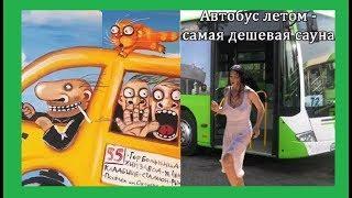 Про автобусы и про маршрутки  Карикатуры смешные картинки юмор анекдоты