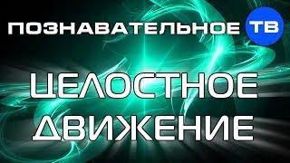 Подробно о целостном движении (Познавательное ТВ, Евгений Беляков)
