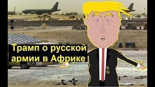 Трамп о русской армии в Африке. Zapolskiy мультфильмы