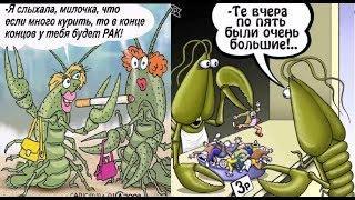Про рака. Прикольный рак. Карикатуры смешные картинки. Юмор.