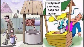 Про колодец. Карикатуры смешные картинки юмор  жизнь в деревне