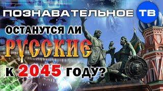 Останутся ли русские к 2045 году? (Познавательное ТВ, Дмитрий Таран)