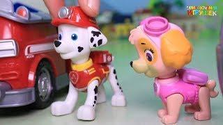 Щенячий патруль |  Мультики с игрушек щенячий патруль и их друзья. Прямой Эфир