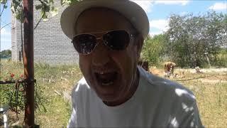 Анекдот от Алексеевича про Любимого Лёшу. Смех. Юмор. Ржач.