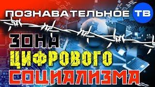 Зона цифрового социализма (Познавательное ТВ, Роман Василишин)