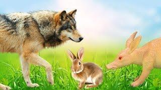 КАК ЗАЯЦ СПАС ВОЛКА. Никто не хочет помочь!!! Мультфильмы про животных для детей