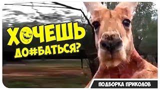ПРИКОЛЫ #6 | смешные видео приколы | юмор | приколы года