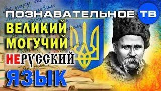 Как делают незалежну Украину 2: Великий могучий нерусский язык (Познавательное ТВ, Елена Гоголь)
