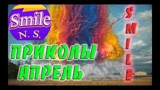 Прикольчики Апрель Чудики из сети Приколюхи коты Угар юмор Новые приколы # 19
