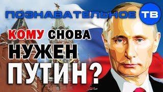 Кому снова нужен Путин? (Познавательное ТВ, Елена Гоголь)
