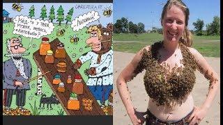 Про пчеловоды  Работа пчеловодом  Карикатуры смешные картинки юмор фото приколы